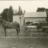 Horse, Dog, and Wagon