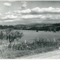 W-52_Pasture.jpg