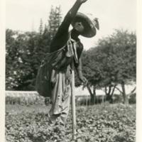 ScarecrowNearGeorgia2.jpg
