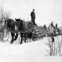 0042-Winter Logging.jpg