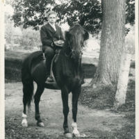 Raymond Bosworth on Prince